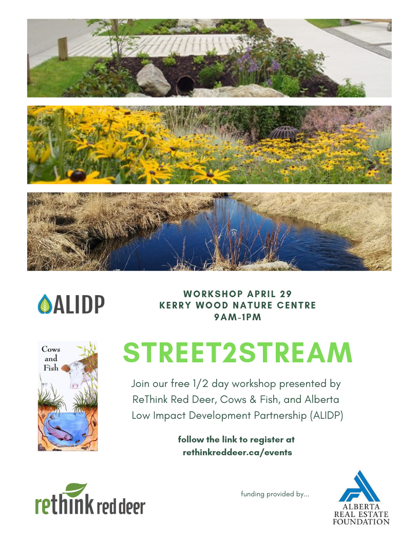 Street to Stream Workshop poster
